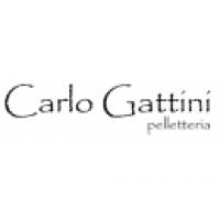 Carlo Gattini - оригинальная продукция в Москве со скидкой 10%
